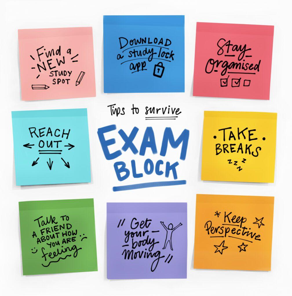 tips to survive exam block